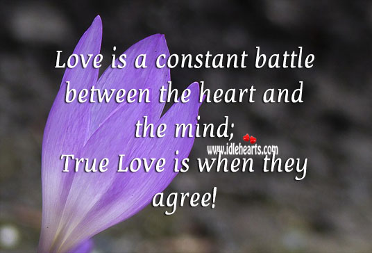love-is-a-constant-battle-between-the-heart-and-the-mind