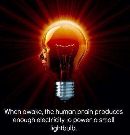 thehumanbrainproduceselectricity