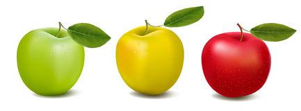 tree-color-apples-concept-design-copy-space-18027843