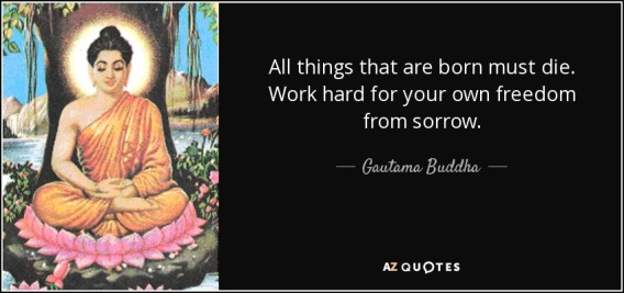quote-all-things-that-are-born-must-die-work-hard-for-your-own-freedom-from-sorrow-gautama-buddha-146-46-18