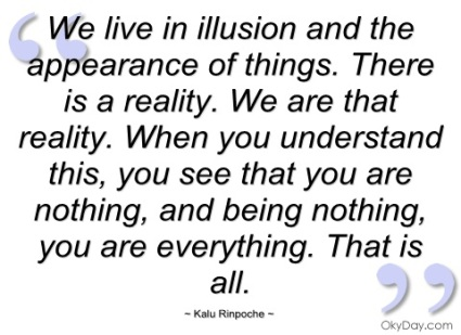 we-live-in-illusion-and-the-appearance-of-things-there-is-a-reality-we-are-that-reality-when-you-understand-this-you-see-that-you-are-nothing-and-being-nothing