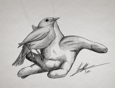 bird_on_hand___drawing__by_kr_aw-d4e0p1k