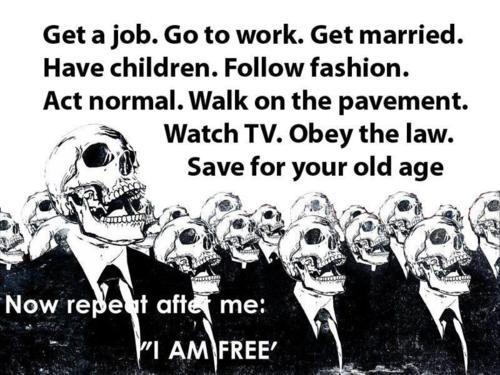 cog-free