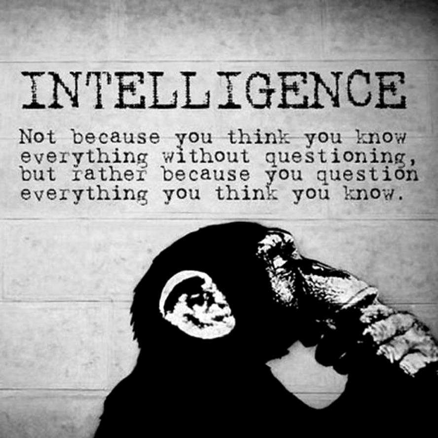 intelligence-not-because-you-think-you-know-everything-without-questioning-but-rather-because-you-question-everything-you-think-you-know-quote-1